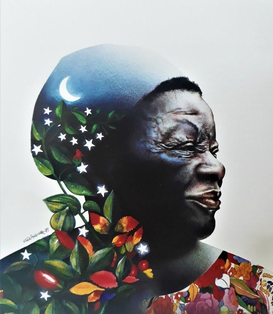 """Museu Afro Brasil inaugura a exposição """"A arte de Elifas Andreato na música brasileira – Um tributo à Clementina de Jesus"""""""